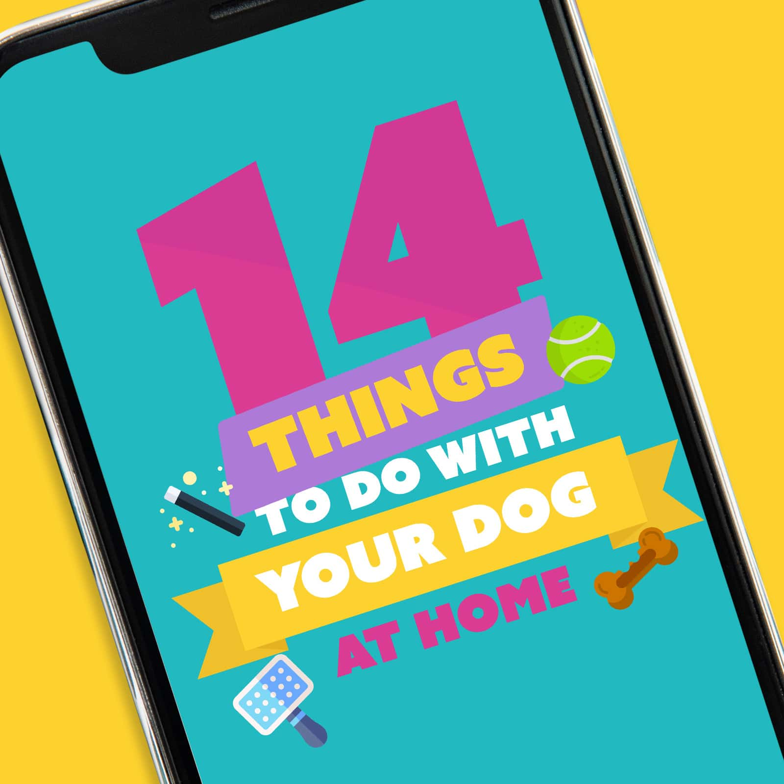 Screenshot of 14 Things To Do with Your Dog App